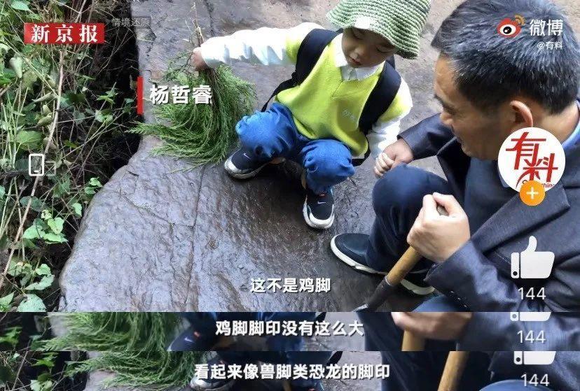 25年后,97%孩子当不了精英,藏着扎心的真相 - 第2张  | 深圳市羽盛信息科技有限公司